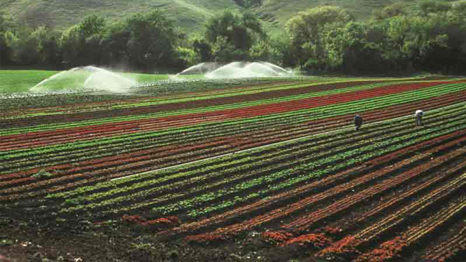 VFDs and Irrigation
